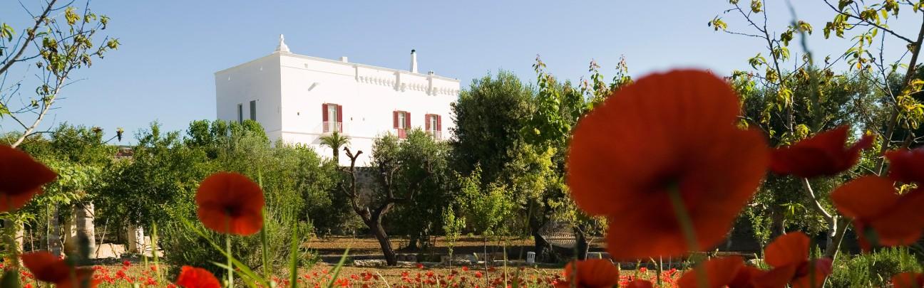 Masseria Torre Coccaro Hotel - Puglia - Italy