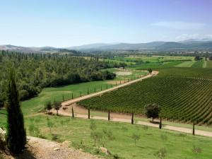 Photo of Conti di San Bonifacio Wine Resort