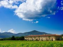 L'Andana – Tuscany – Italy